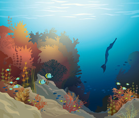 Underwater vector - coral reef and free diver.