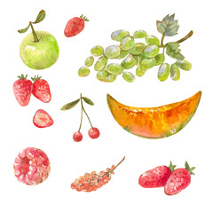 set of different russian fruits drawn with watercolor paint. Illlustrations isolated on white. Sweet healthy food.