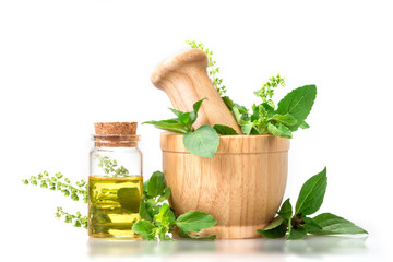Sweet basil and hot basil in wooden mortar with essential oil , alternative herbal medicine and aromatherapy concept