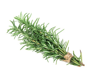 The Rosemary bound on a white background