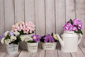 Flores variadas en maceteros y regadera 1.