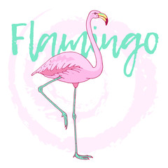 Vector pink flamingo bird illustration. Hand drawn sketch with the wild animal on abstract background