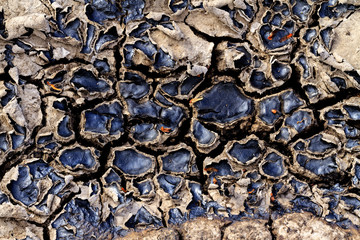 cracked earth from oil spills