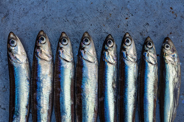 Fresh fish anchovy background