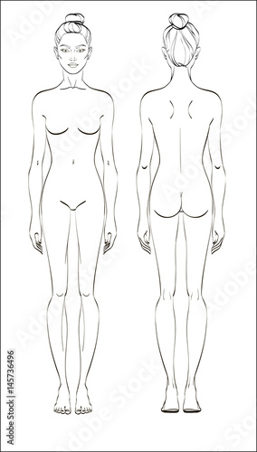 Female figure: front and back. Vector. Human body in linear style ...