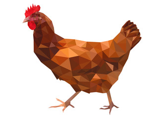 Chicken - Low poly illustration