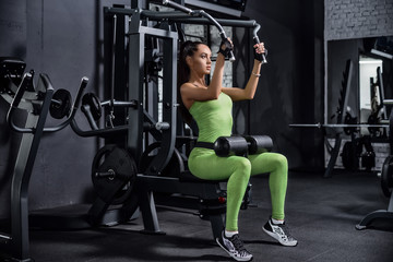 Training in the gym. Fitness girl to lift weights. Fitness train