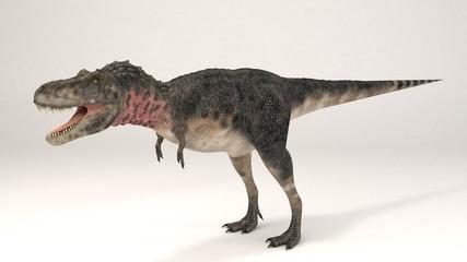 Tarbosaurus-Dinosaur
