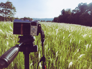 camera on tripod with meadow, Outdoor photography