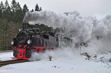 Sonderzug der Harzquerbahn