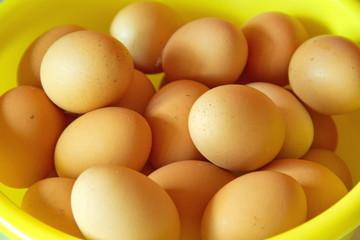 Batch of eggs, bird's eye view