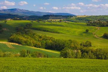 In de dag Lime groen Zona collinare rurale della regione Umbria