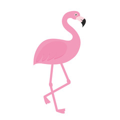 pink flamingo icon over white background. vector illustration
