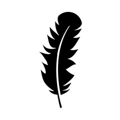feather icon over white background. vector illustration