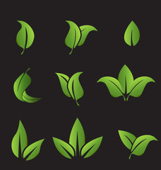 Vector - Set of green leafs icons elements