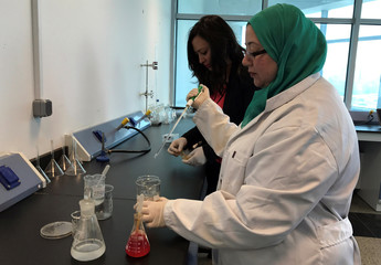 Assistant professor Irene Samy and researcher Marwa Faisal work on their project to create biodegradable plastic bags from shrimp shells, a project in collaboration with Nottingham University, at the Nile University in Cairo