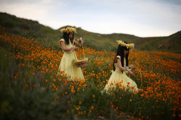 Julia Lu, 5, and Amy Liu, 5, walk through a massive spring wildflower bloom caused by a wet winter in Lake Elsinore