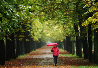 FILE PHOTO: A woman enjoys a walk along an avenue of trees at Prater recreation area on a rainy autumn day in Vienna