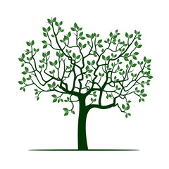Natural Green Tree with Leafs. Vector Illustration.