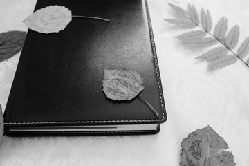 Fallen leaves on the notepad.