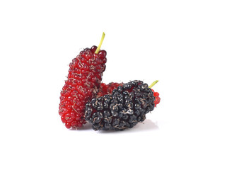 mulberry berry on a white background