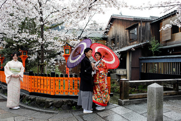 A couple poses for a photo with blooming cherry blossoms trees in Kyoto