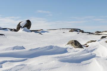 Snow like waves frozen from the winter winds.Blue sky,rocks.