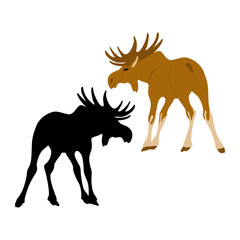 moose  vector illustration style Flat silhouette