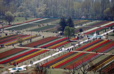 Visitors walk inside Kashmir's tulip garden in Srinagar