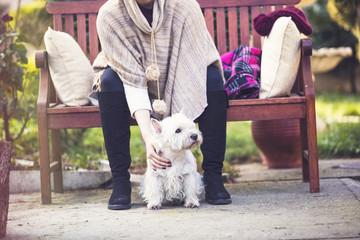 Young girl siting on wooden bench and holding west highland white terrier