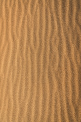 Close-up of rippled pattern on sand at Mongolia Gobi desert