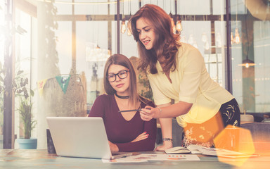 Two young businesswomen working together in office.First woman stands near table and points with pencil on laptop screen.