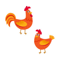 Cute and funny couple of farm rooster and hen, two chicken, cartoon vector illustration isolated on white background. Cute cartoon, comic style red and orange farm rooster, hen, chicken