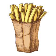 Sketch colorful graphic fried potato illustration, vector vintage draft silhouette drawing, isolated on white background. Delicious retro etching food design.