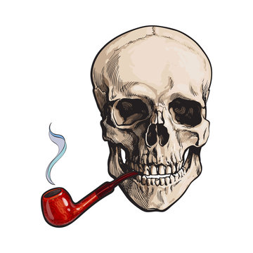 Hand drawn human skull smoking lacquered wooden pipe, sketch style vector illustration isolated on white background. Realistic hand drawing of skull with smoking pipe