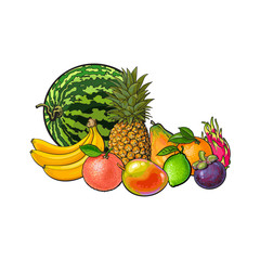 Tropical fruits - grapefruit orange lemon watermelon mango dragon fruit pineapple papaya banana mangosteen, sketch vector illustration on white background. Hand drawn set of tropical fruits