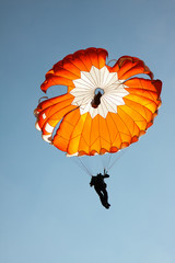 The parachutist with a round parachute.