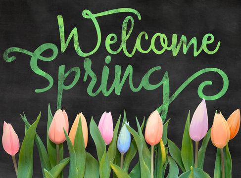 22,602 BEST Welcome Spring IMAGES, STOCK PHOTOS & VECTORS | Adobe Stock