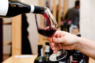 Tasting experience with a glass of Barolo wine in Alba (Piedmont, Italy)