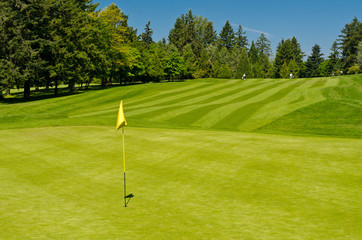 Golf course with gorgeous green and flag