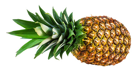 Leinwandbilder - pineapple isolated on white