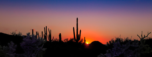 Southwestern Sunset Panorama