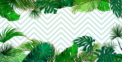 Tropical palm leaves set, drawn vector collection. Isolated on background. Decorative elements, botanical pattern. Trendy Card for invitation, greetings, sale promotion, wedding, banner.