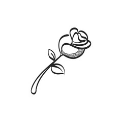 Sketch icon - Rose flower