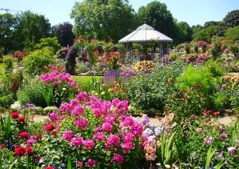 Search Photos Planten Un Blomen