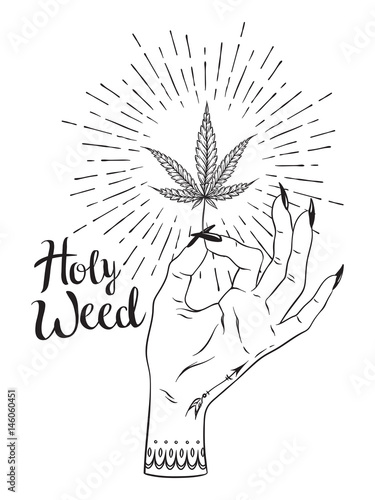 Marijuana Leaf In Female Hand Isolated Over White Background