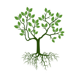 Color Tree with Leafs and Roots. Vector Illustration.