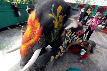 A Thai mahout paints an elephant in celebration of the Songkran water festival in Ayutthaya province