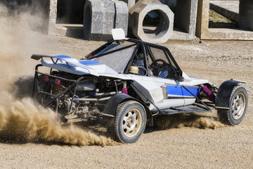 rally buggy car race