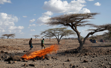 A Turkana tribesman walks in front of burned goats' carcasses in a village near Loiyangalani